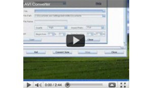 How to convert video using AVI Converter